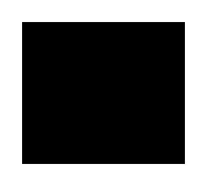 WN Regular Logo Stacked trasp copy